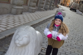 Swedish lion and lioness